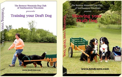 DVDs produced by The Bernese Mountain Dog Club of Southeastern Wisconsin