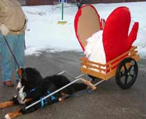 Large Basic Dog Cart